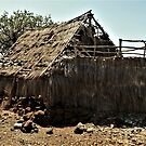 My Little Grass Shack - Lapakahi State Historical Park, Island Of HawaII by Rebel Kreklow