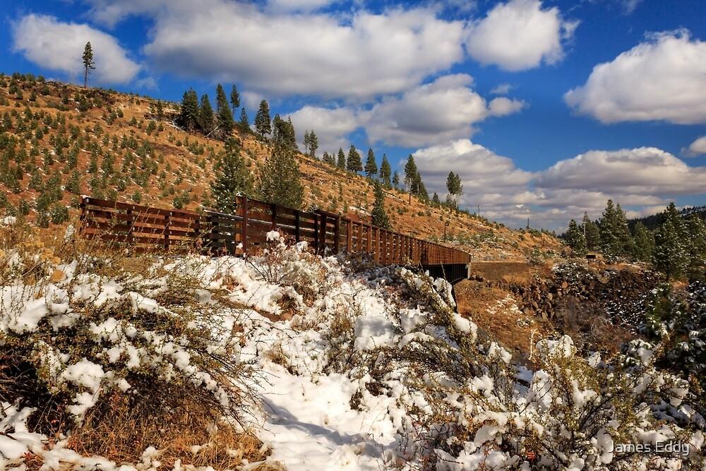 Winter On The Bizz Johnson Trail by James Eddy