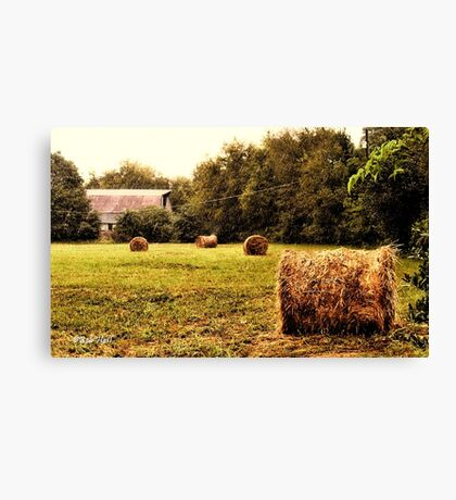"""Bales Along the Tree line""... prints and products Canvas Print"