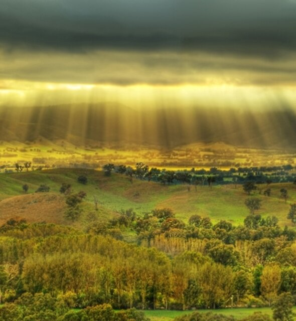 Morning sunrays, Ovens Valley by Kevin McGennan