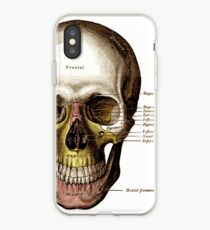 Gray's Anatomy Skull iPhone Case