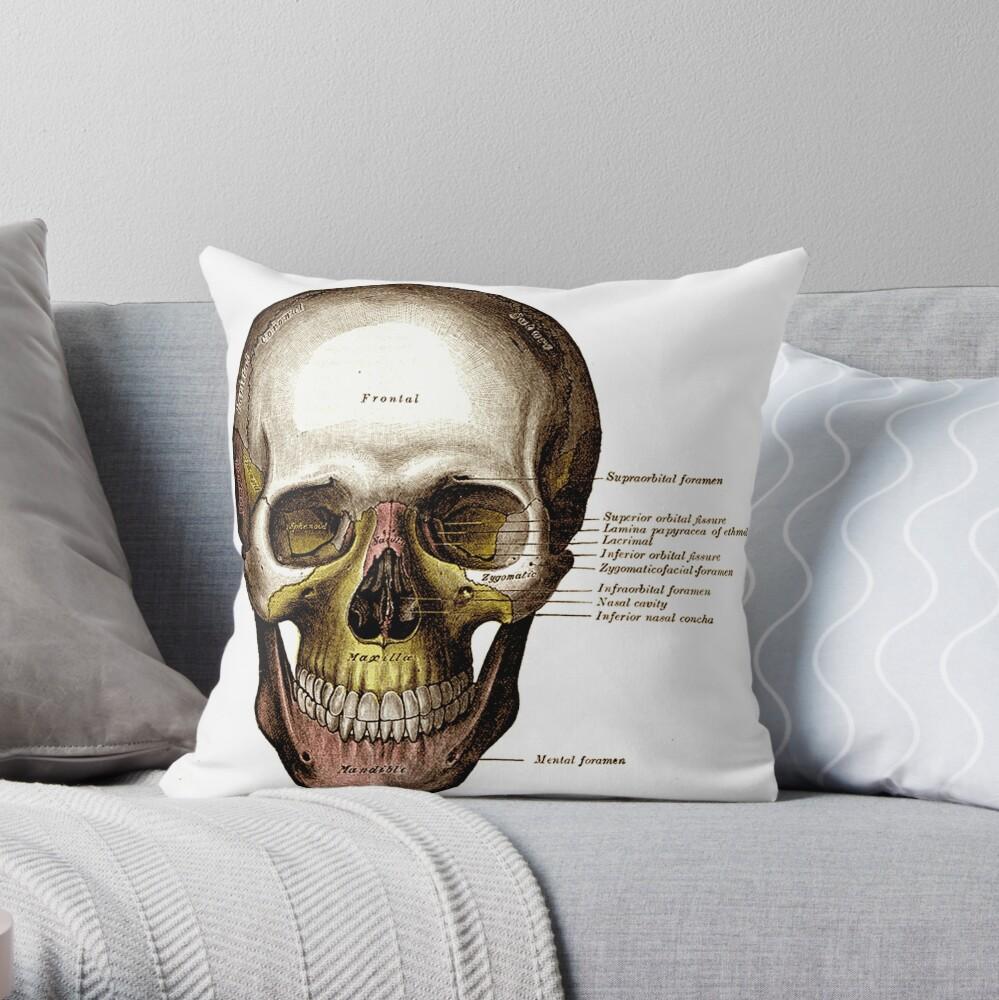 Lamina Pillow