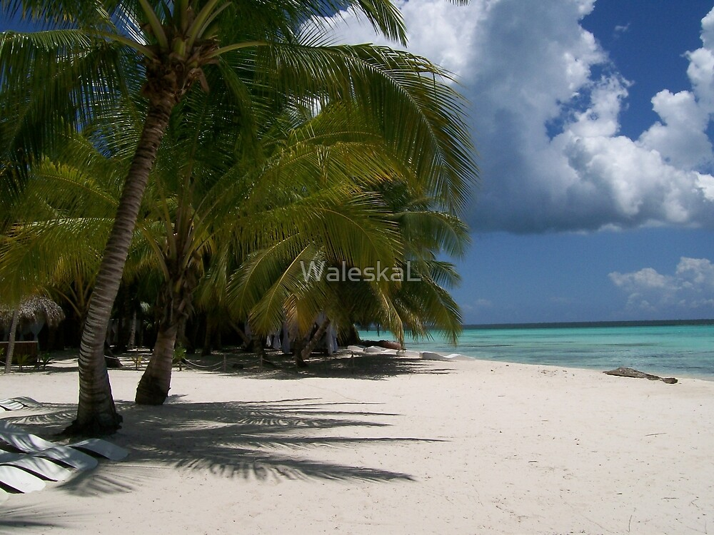 Caribbean Magic by WaleskaL