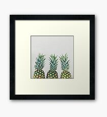 Pineapple Trio Framed Print