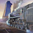 9F at Saltley shed. by Mike Jeffries