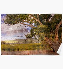 Jacobs Winery in Barossa Valley Poster