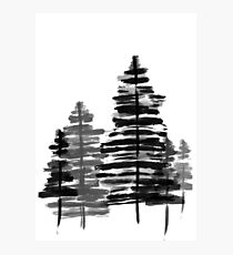 Winter Woods - Black and White Hand-Painted Design Photographic Print