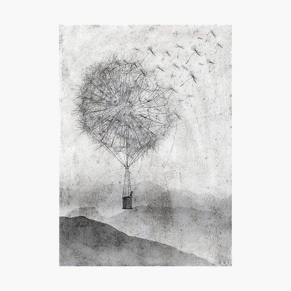 Dandelion Daydream Photographic Print