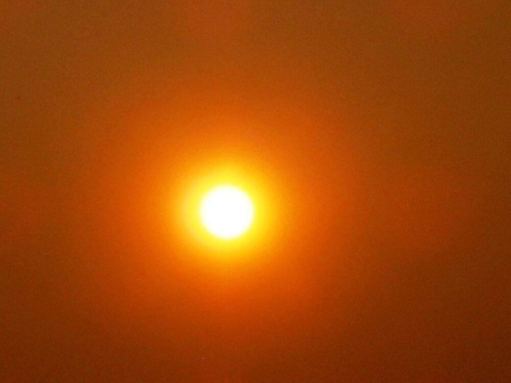 WARNING:   DO NOT LOOK DRIECTLY AT THE SUN by WhiteDove Studio kj gordon