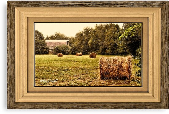 """""""Bales along the Tree Line"""" ...with a matted and framed presentation, for prints and products  by Bob Hall©"""