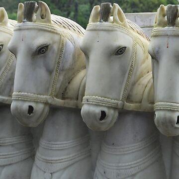 White Horses, Mauritius by martina