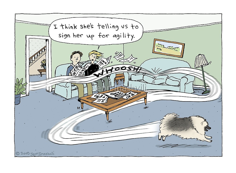 Keeshond Dog Cartoon by Jenn Inashvili