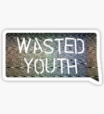 Wasted Youth Sticker