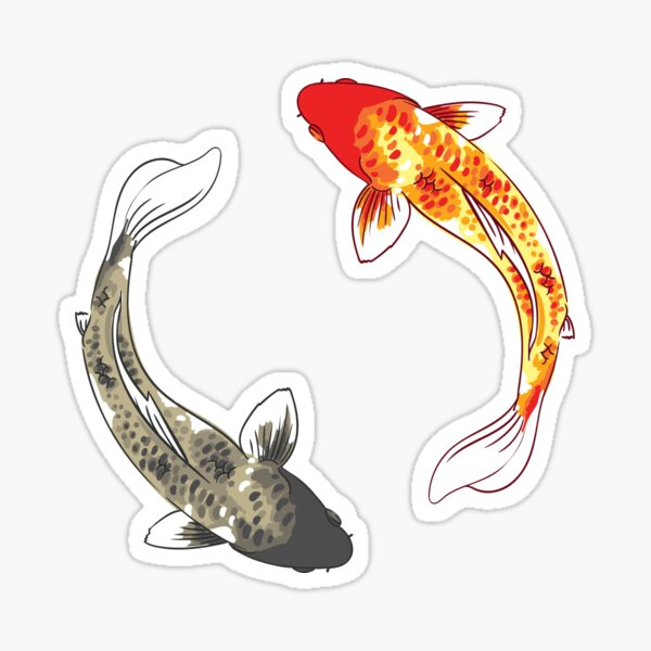 Koi Fish - Yin Yang Sticker