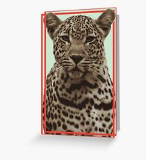 Leopard Vector Greeting Card