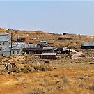 Standard Consolidated Mining Company Stamp Mill - Bodie, Mono County, CA by Rebel Kreklow