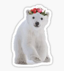 Polar Bear Vector Sticker