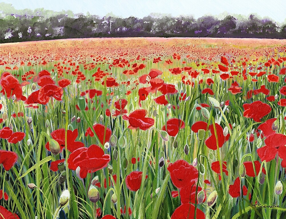 """""""Poppies - Poppy Fields Painting used for Remembrance Day ..."""