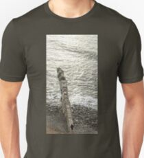 A Walk on the Water Unisex T-Shirt