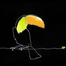 Toucan by Matt Mawson