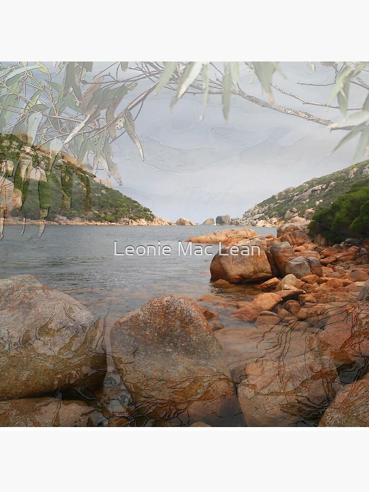 Waychinicup Rivermouth & Reflection by yallmia