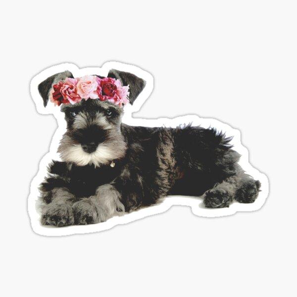 Miniature Schnauzer Flower Crown Sticker