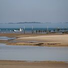 Cap Ferret Peninsula  by DebbyScott