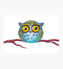 Funny blue owl with the yellow eyes Photographic Print