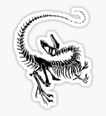 Velociraptor Skeleton Print Sticker