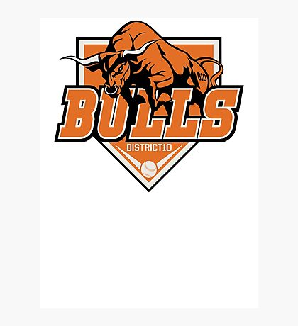 District 10 Bulls Photographic Print