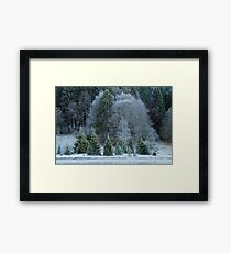 Autumn can be cold Framed Print
