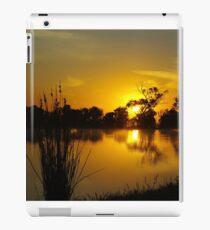 Liquid gold iPad Case/Skin
