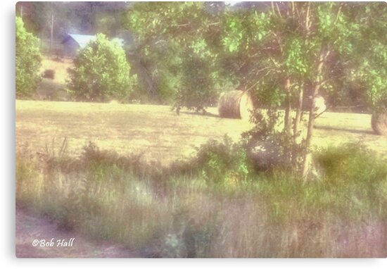 """Morning Haze on Field's Edge""... prints and products by Bob Hall©"