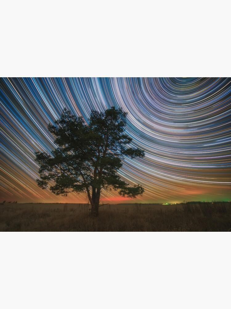 Lone pine by Eugenstellar