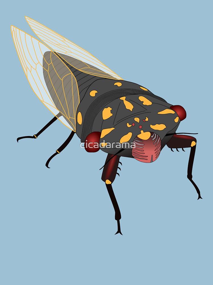 Cherrynose cicada (no text) by cicadarama