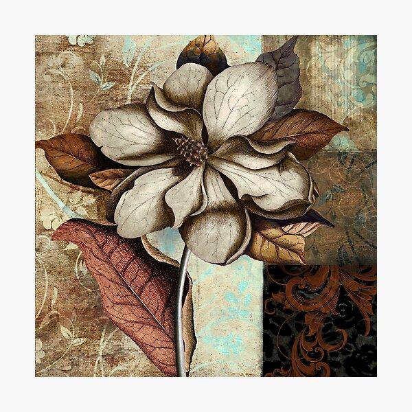 Ecru Magnolia Photographic Print