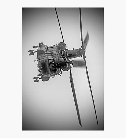 Wokka Wokka 3 !! - Airbourne 2014 BW Photographic Print