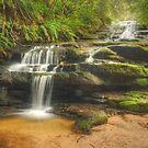 Leura Cascades by Michael Matthews