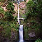 Multnomah Falls by jswolfphoto
