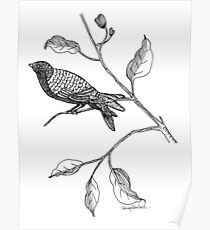 Hallway Bird Poster