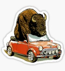 Bison in a Mini. Sticker
