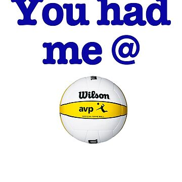 You Had Me @ Volleyball Blue by wellingtonjg