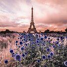 Eiffel Tower, Paris - France  by Steven  Sandner