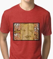 """""""Squirrels on Assignment, OPERATION EAGLE EYE, A Two Part Photo Saga: Second Picture, 'Got Caught'""""... prints and products Tri-blend T-Shirt"""