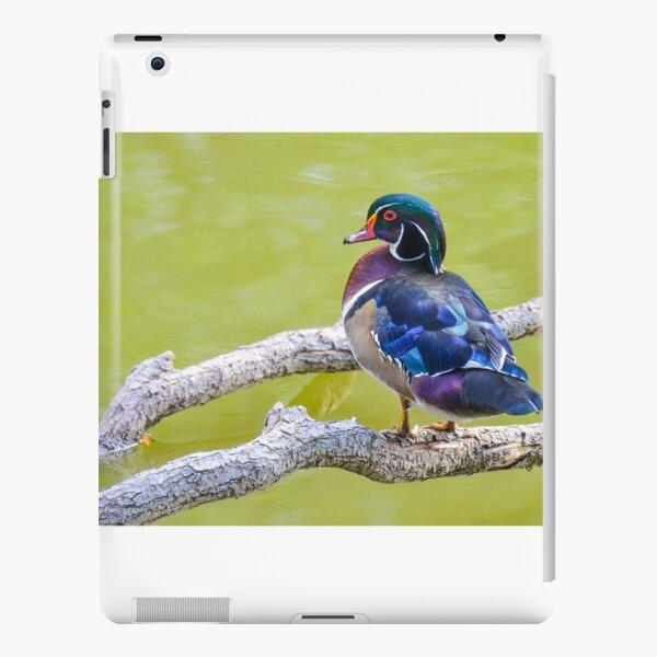 Wood Duck  iPad Snap Case