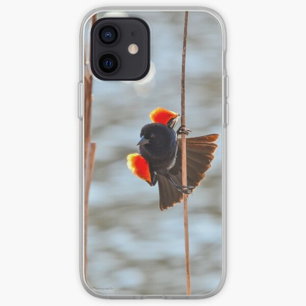 Red-winged Blackbird  iPhone Soft Case