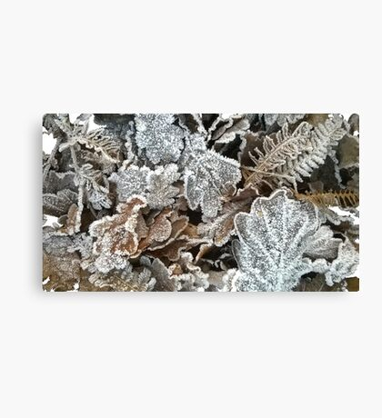 Frosted leaves - fluid edge Canvas Print