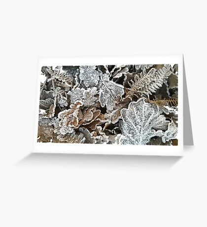 Frosted leaves - fluid edge Greeting Card