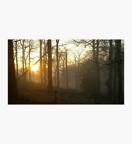 Golden sunset - foggy hillside Photographic Print