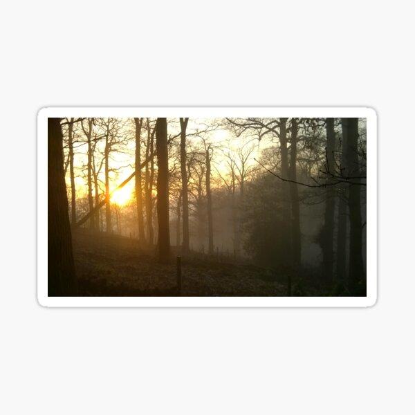 Golden sunset - foggy hillside Sticker